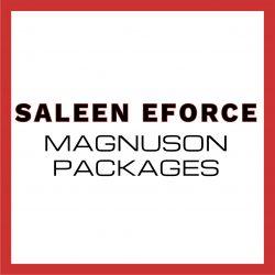 saleen eforce magnuson packages