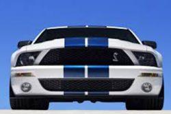2007-2014 GT500 Mustang
